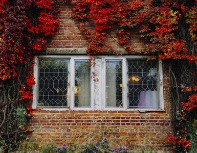 destinations for fall foliage